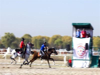 Atlı Cirit 1. Lig Mavi Grup Müsabakaları Tamamlandı