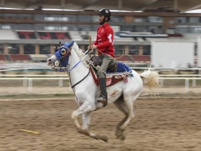 Atlı Ligi Yarı Final Müsabakaları'nda B Grubu'nun kazananı  Erzurum Şengal