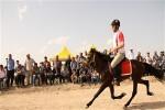 Türkiye Geleneksel Spor Dalları Federasyonu Rahvan Binicilik Müsabaka Talimatı.